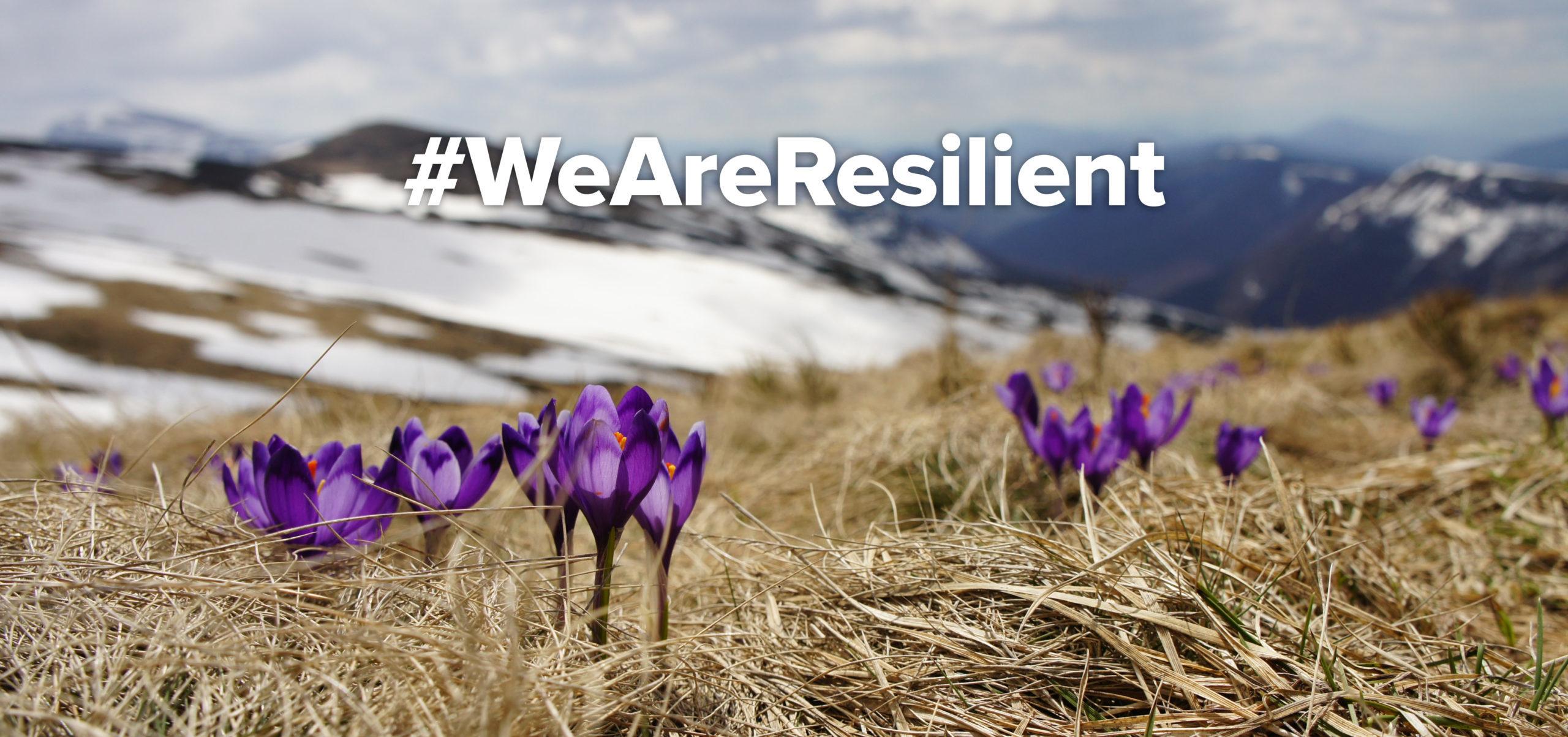 #WeAreResilient