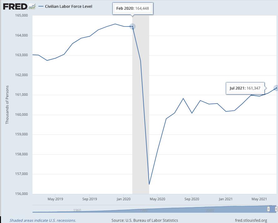 Labor Market Participation 2020-2021